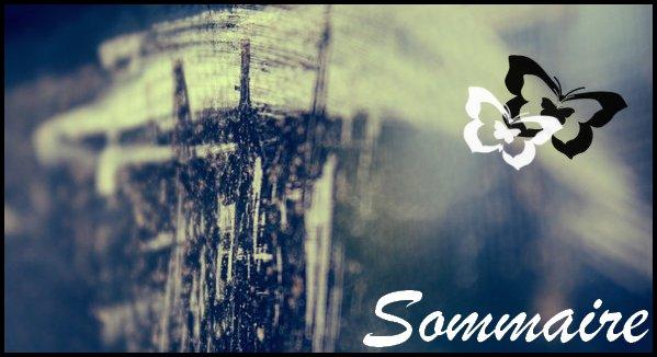 # Article sans nombre : Sommaire #