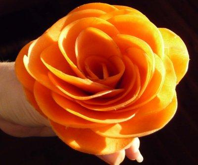 22d653563b04 Fleur en i - kel occaz