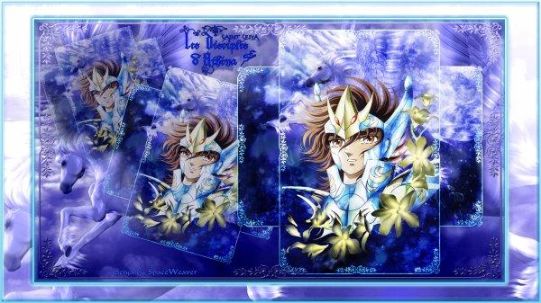Anniversaire de Seiya !