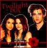 Twilight-b0x