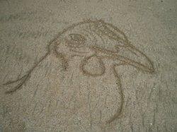 Dessins dans le sable (3)