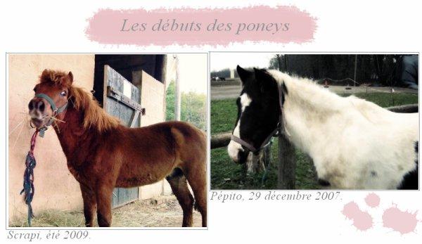 Les débuts de Scrap'Poney & Pépito + Article liens.