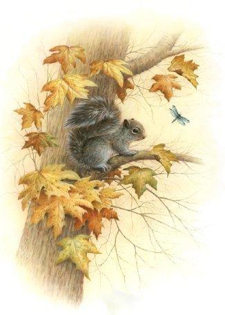 La douceur d'automne.
