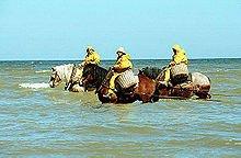Youpi , nous partons 3 jours face a la mer a Oostduinkerke , séjour offert par nos trois adorables enfants