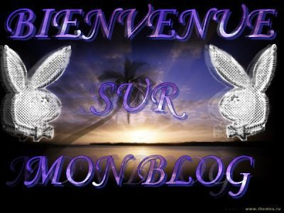 salut a touse et toute mes ami  et ami et amies voici mon deusiem blog ,td-bellevoiture