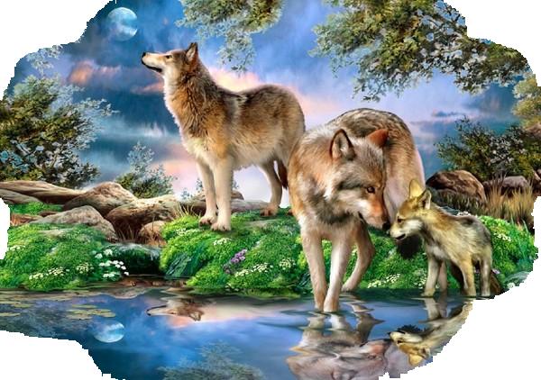 """bienvenue .....chez nature 022 - """" """" Qui lutte contre le destin et la loi de la  nature  est infailliblement vaincu """" """".  bonne visite a tous ,et toutes ღﻬஐ♥ ...(!)........♥ஐﻬღ♥ღﻬஐ♥ ........♥ஐﻬღღﻬஐ♥ .......♥ஐﻬღ♥ღﻬஐ♥ .....♥ஐﻬღ"""