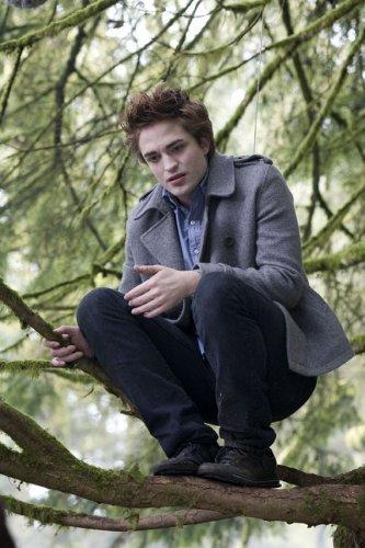 I(l) Twilight (edeward)          mes poème d'amour mes coup de blues et mais chansons pref ....