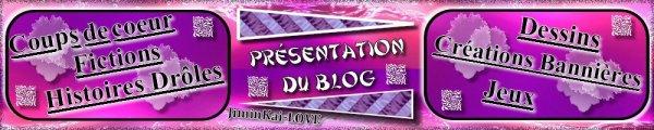 ► Présentention BLOG/Sommaire ◄