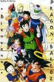 Photo de dragon-ball02