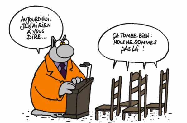 Le chat. Humour 2
