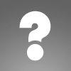 Une boule de noël en sequins dorée et argentée