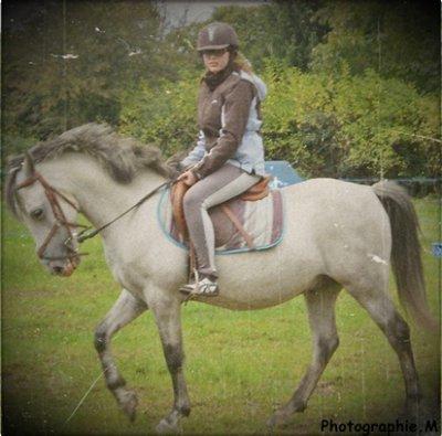 Monter un cheval vous donne un goût de liberté ♥ . Deja 4 ans qu'on forme une complicité Quellogs (: .