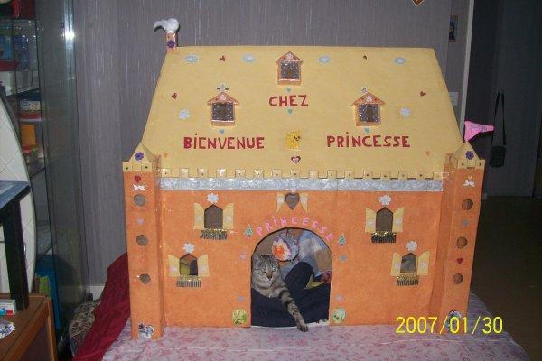 maison fait main en carton,fait par moi et mon mari pour notre chatte qui s'appelle princessse