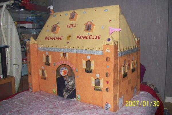 maison fait main en carton,,fait par moi et mon mari pour notre chatte qui s'appelle princessse