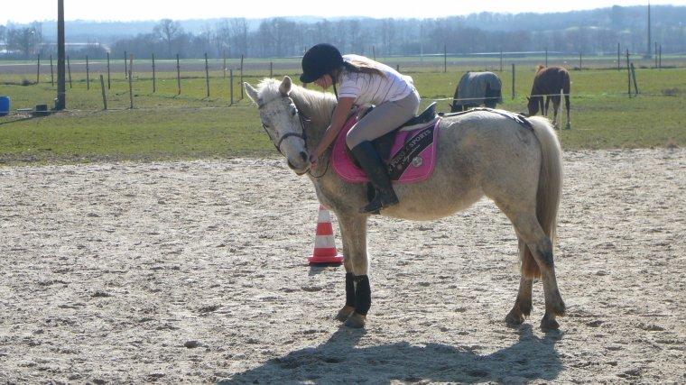 Petit poney parfait.