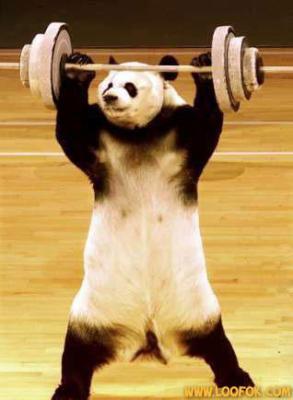 Tout le monde doit faire du sport voyons ...