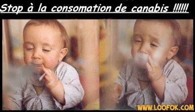 Attention! les infos disent vrai le canabis touche toutes les generations !