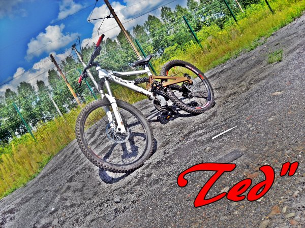 freeride Teddy :)