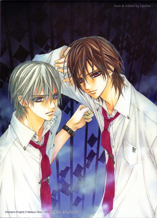 Citation Vampire Knight