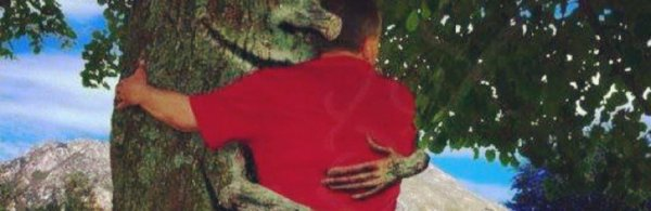 7.3  - Un arbre ...