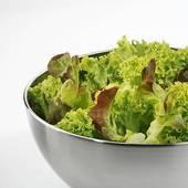 55.3 - Des salades  ....