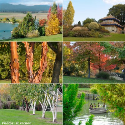 78.4 - Des jardins remarquables
