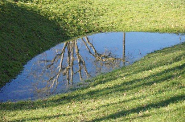 """88 -""""Pluie du matin n'arrête pas le pèlerin...."""" ni les jardiniers   :)"""