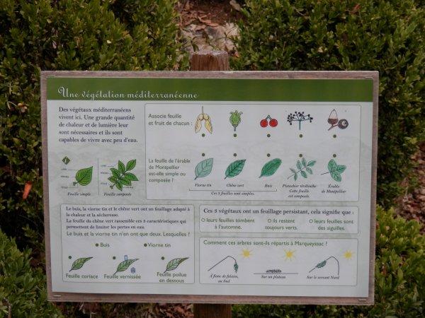 94.3 - Les jardins suspendus de Marqueyssac en Dordogne