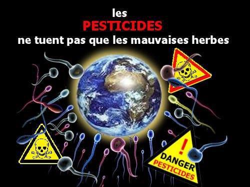 """100 - Voir et Revoir """"OGM vers une alerte mondiale """" & """" Les moissons du futur"""" - La Xénobiotique par le professeur Seralini"""