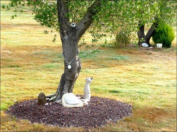 101 - Mourir écolo , c'est possible ==> Jardin de mémoire.com