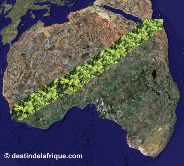 105.4 - La grande muraille verte contre la désertification en Afrique et en Chine ....