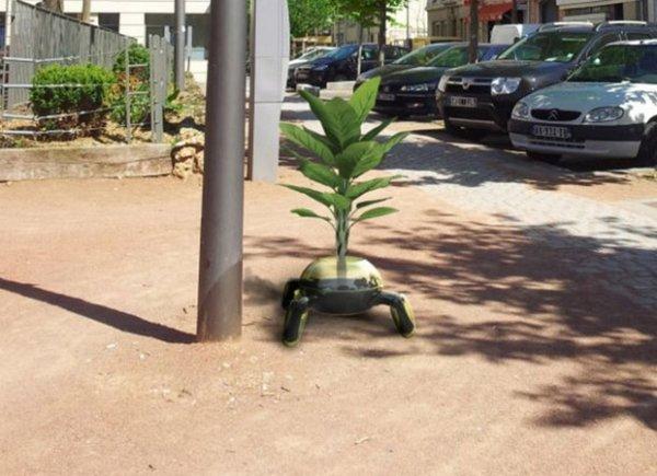 115.4  - Le Cyborg végétal ....Quand les plantes prennent leur pied !