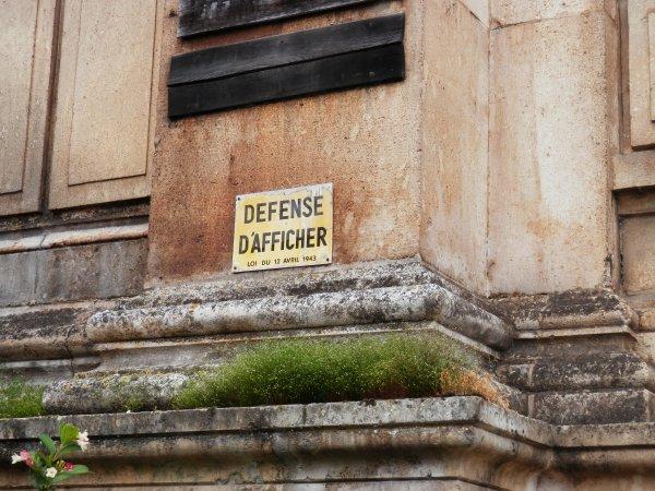 """118.2 - """"Chassez le naturel, il revient au galop"""": La conquête végétale de Moissac ...."""