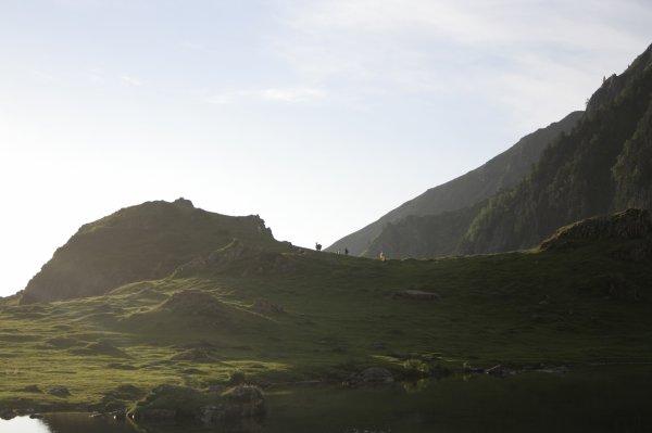 123.4 - Un troupeau de chèvres va distraire la jeunesse autour du lac en c½ur comme un joyau...