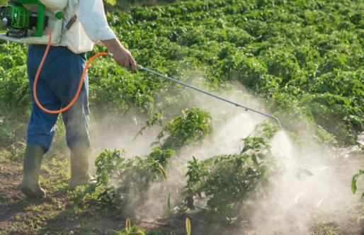 133.4 - Les Sénateurs recommandent aux collectivités de ne plus utiliser de pesticides