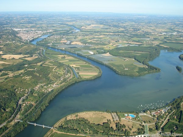 136.1  - Au pied  d'un noyer sur les coteaux de Moissac....