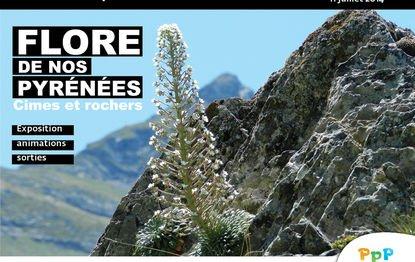 152.4 - Flore de nos Pyrénées :