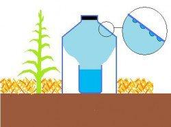 153.2 - Irrigation solaire au goutte à goutte : une technique gratuite à la portée de tous