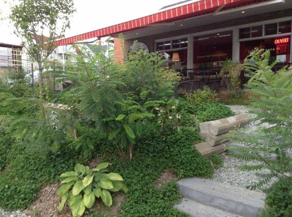 162 - Écomestible, aménagement paysager comestible et permaculture urbaine