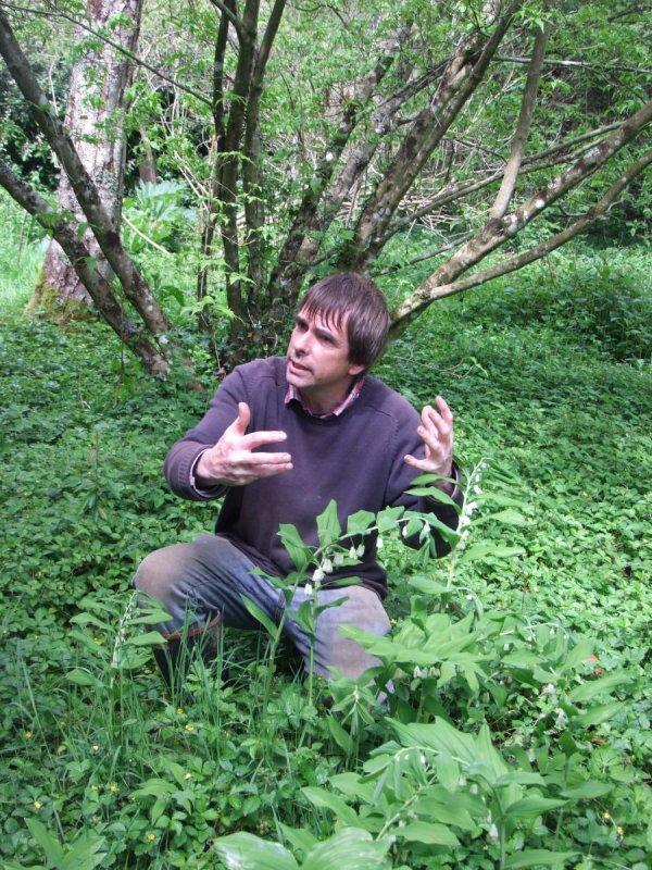 164.1 - Une forêt qui se mange ....