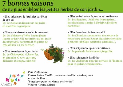 164.3 - Mauvaises herbes, on vous aime !