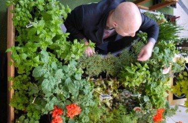 165.4 - Jardinothérapie : cultiver la terre pour cultiver son estime de soi