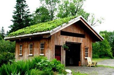 176.2 - Fabriquer soi- même un toit végétal