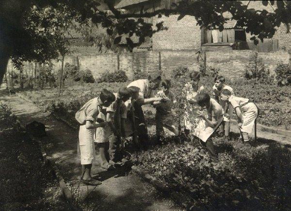 181.1 - Drôles de Jardiniers