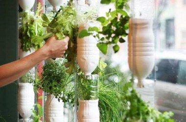 182.1 - Window Farms ou comment faire un potager dans son studio !