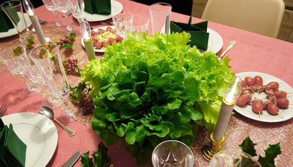 """186.1 -Ce couple fait pousser des salades bio à l'aide de truites // """"Guerre &  Paix au jardin """""""