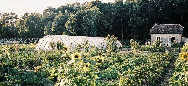 187.3 - La permaculture peut-elle nourrir les Français?