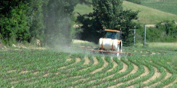 190.2 - La CATASTROPHE de l'utilisation des nitrates dans l'agriculture, mais ....