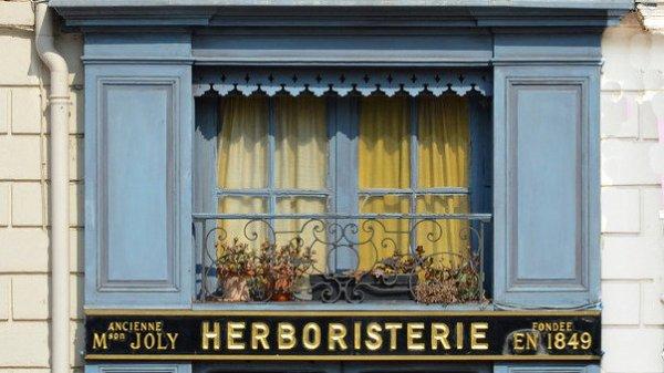 191 - Recréez le métier d'herboriste