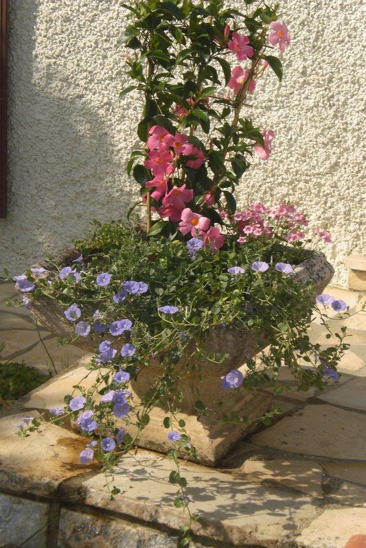 193 - La compile de toutes les réalisations du jardinier du 82...qui changent  la face de  la terre  :D